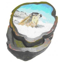 Boite marmotte dans la neige
