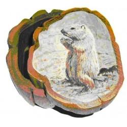 Boite marmotte debout